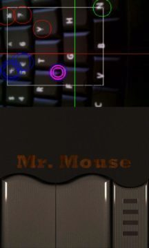 Mr. Mouse