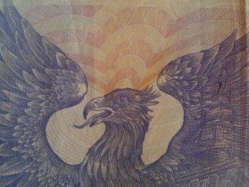 Bankovka ze vzdálenosti 6 cm