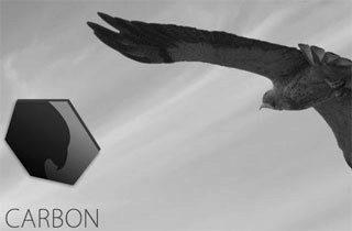 carbon_ico