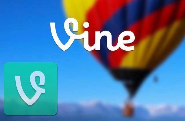 vine_ico