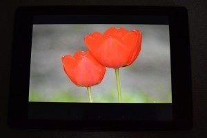 Acer-Iconia-Tab-A1-810-displej (1)
