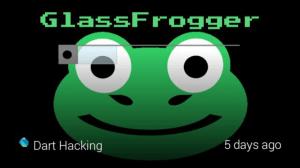Google Glass Frogger (1)