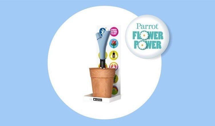 Parrot Flower Power (2)