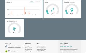 Fitbit Flex webové rozhraní nástěnka 2