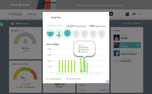 Fitbit Flex webové rozhraní nástěnka 3