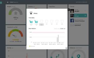 Fitbit Flex webové rozhraní nástěnka 4