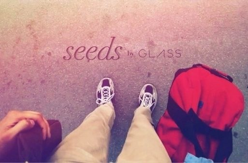 google_glass_seeds