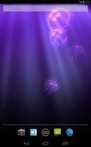 Live JellyFish 2