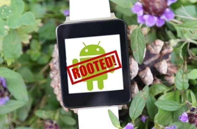lG G Watch root_00000_00000