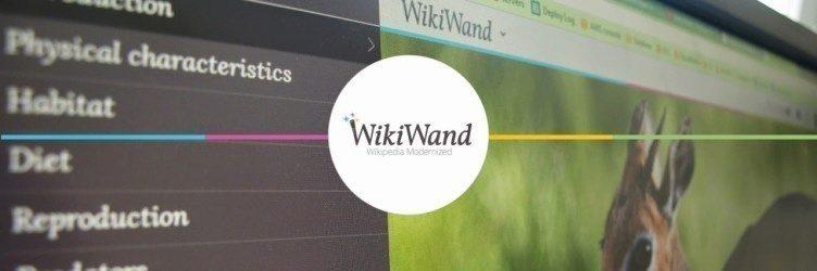 wiki wand 1