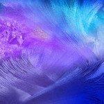 samsung_galaxy_note_4_tapeta_05