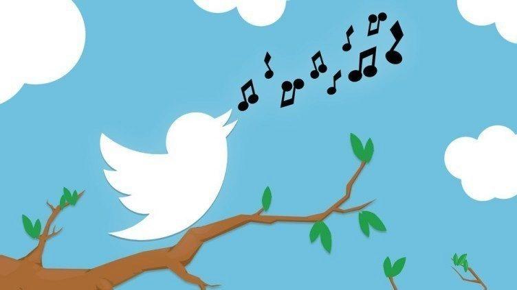 twitter 284 milionů