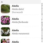 flower power databaze rostlin
