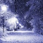 purple-snow