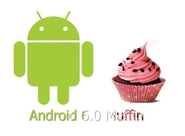 Bude se Android M jmenovat Muffin?