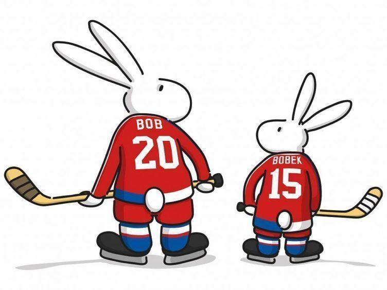 ms v hokeji 2015 - FM