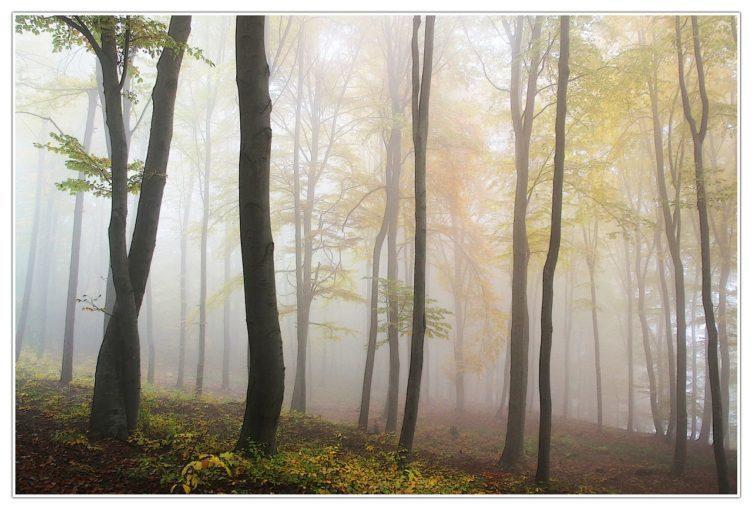 S blížícím se podzimem začíná být stále aktuálnější přesná předpověď počasí