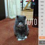 Asus ZenFone 2 Laser – fotoaparát – manuální režim 1