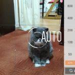 Asus ZenFone 2 Laser – fotoaparát – manuální režim 2