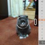 Asus ZenFone 2 Laser – fotoaparát – manuální režim 3