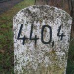 Nexus 5 – fotografie (10)