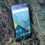Nexus 6 – v trávě, konstrukce (7)
