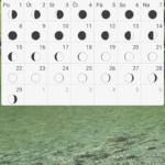 monthwidgetkalendare11
