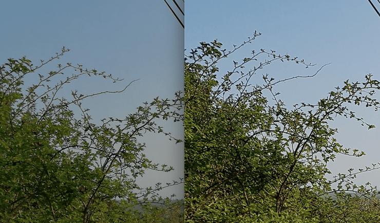 """P9 vlevo, S7 vpravo - dodatečné ostření """"řeže"""" hranici mezi větvičkou a nebem"""