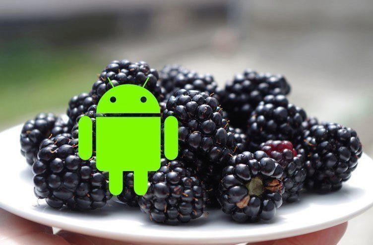 BlackBerryAndroid