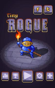 Tiny Rogue_20160720_162110