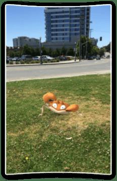 Pokémoni se stali obrovským hitem