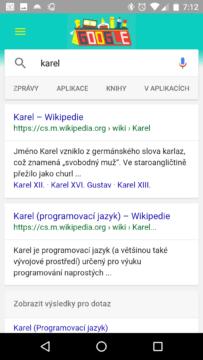 Výsledky hledání na webu
