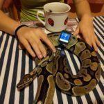 Nexus 6P – pořízené fotografie, špatné světelné podmínky (4)