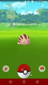 Pokémon GO Gen 2 (6)