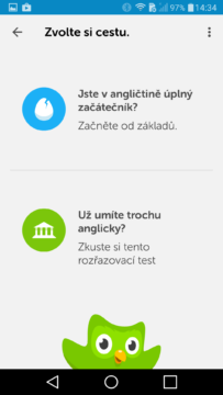 Duolingo (3)