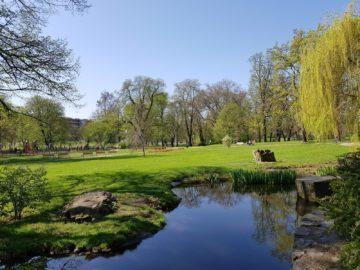 Samsung Galaxy S8 recenze fotoaparát jezero park
