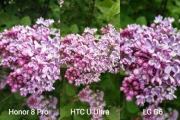 porovnani foto – Honor vs HTC vs LG 1
