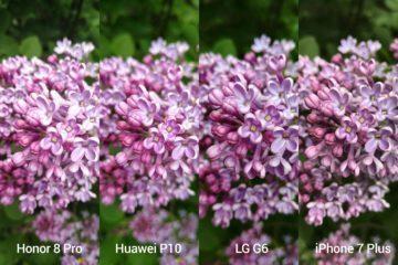 porovnani foto – Honor vs P10 vs G6 vs iP7P 5