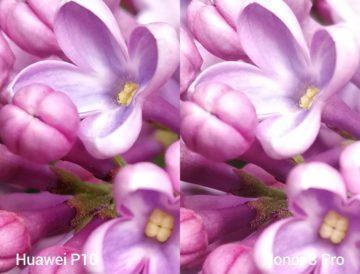 porovnani foto – P10 vs 8 Pro 2