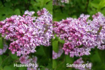 porovnani foto – P10 vs S8 14