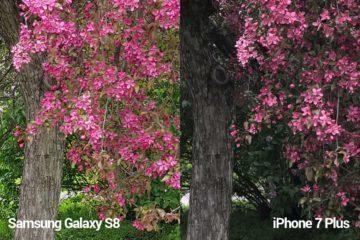 porovnani foto – S8 vs iP 7 P mini 3
