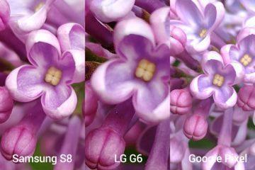 porovnani foto – s8 vs G6 vs Pixel 2