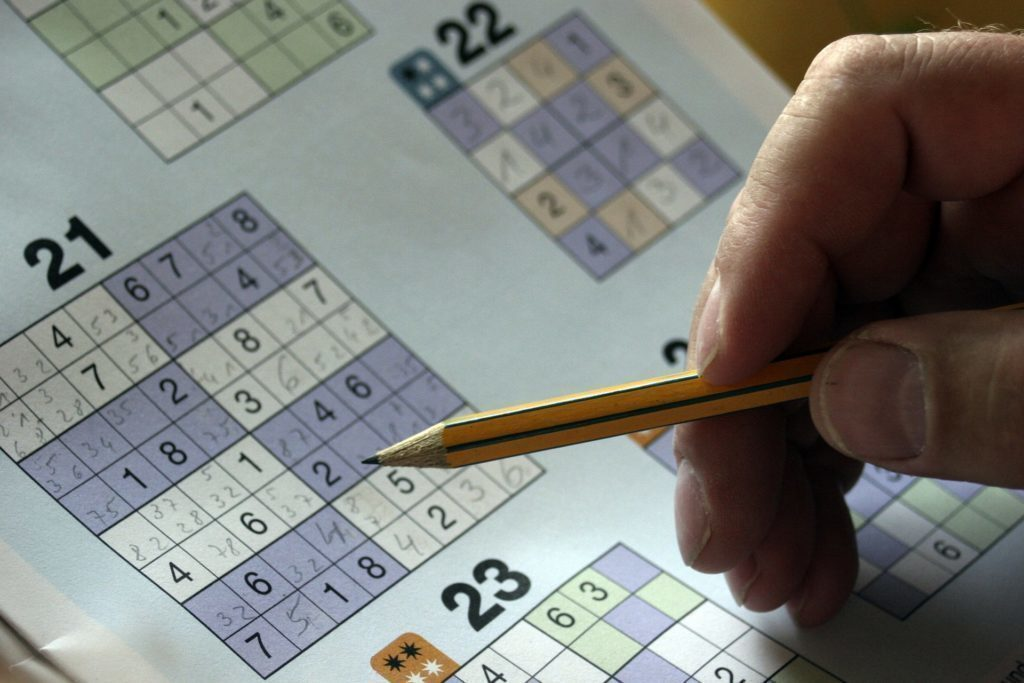 Sudoku má mnoho podob