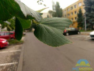HTC 10 – porizene fotografie-5