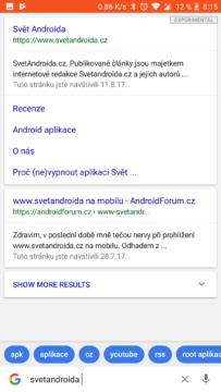 Google vyhledavani Lite