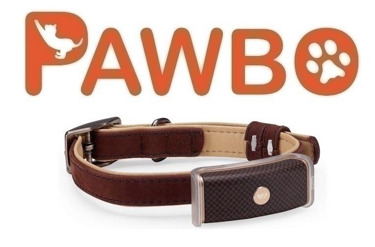 Chytrý obojek Pawbo WagTag vám prozradí, kde se váš pes pohybuje.