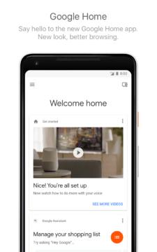 google home pixel 2