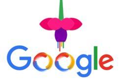 system-google-fuchsia