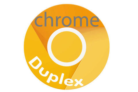 google canary duplex