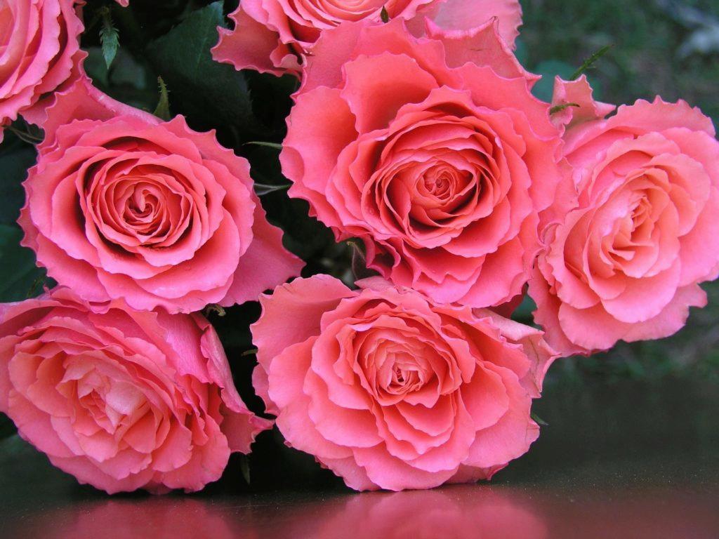 valentyn kvetiny